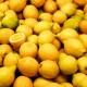 Lemons68