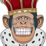kingmonkey